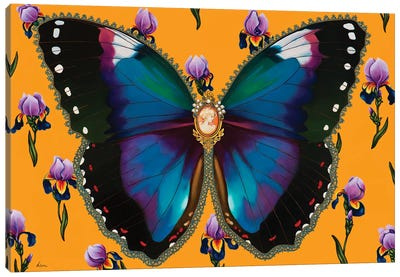 Butterfly With Iris Canvas Art Print