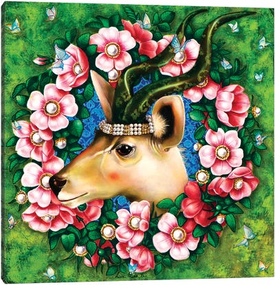 Antilope Canvas Art Print