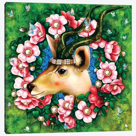 Antilope Canvas Print #LPF2} by Liva Pakalne Fanelli Canvas Art Print