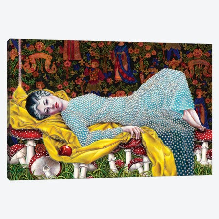 Sleeping Girl In Magic Forest Canvas Print #LPF48} by Liva Pakalne Fanelli Canvas Print