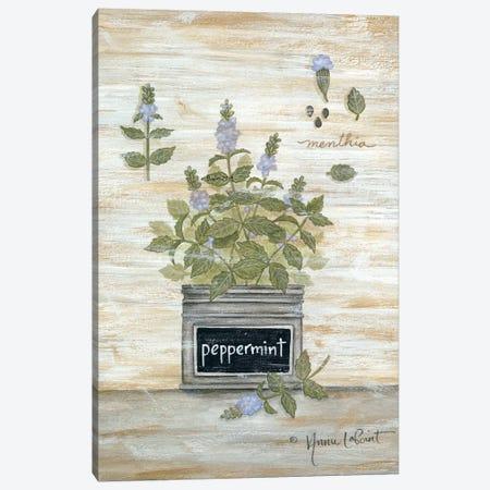 Peppermint Botanical Canvas Print #LPT16} by Annie LaPoint Canvas Print