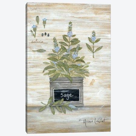 Sage Botanical Canvas Print #LPT18} by Annie LaPoint Canvas Art