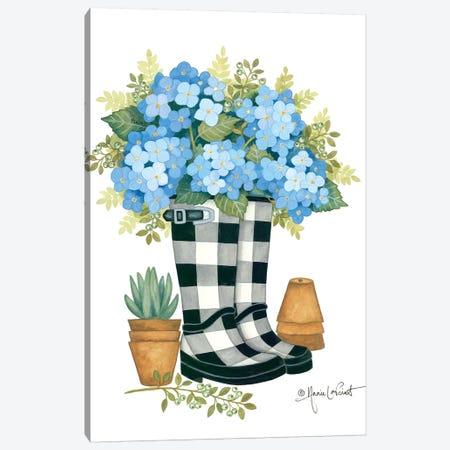 Hydrangeas Boots Canvas Print #LPT41} by Annie LaPoint Art Print
