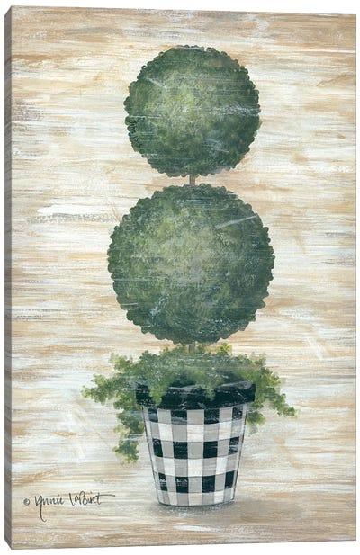 Gingham Topiary Spheres Canvas Art Print