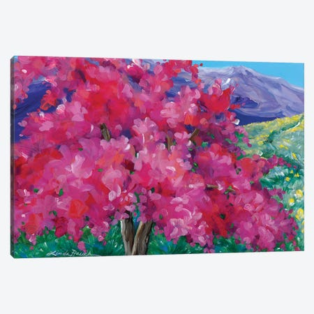 Crimson Crabapple Tree Canvas Print #LRA12} by Linda Rauch Canvas Artwork