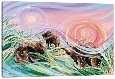 Sky Rainbows Canvas Art Print