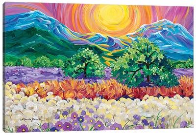 Taos Sunrise Canvas Art Print