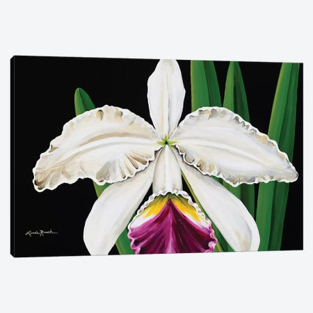 White Orchid Canvas Print #LRA47} by Linda Rauch Canvas Art