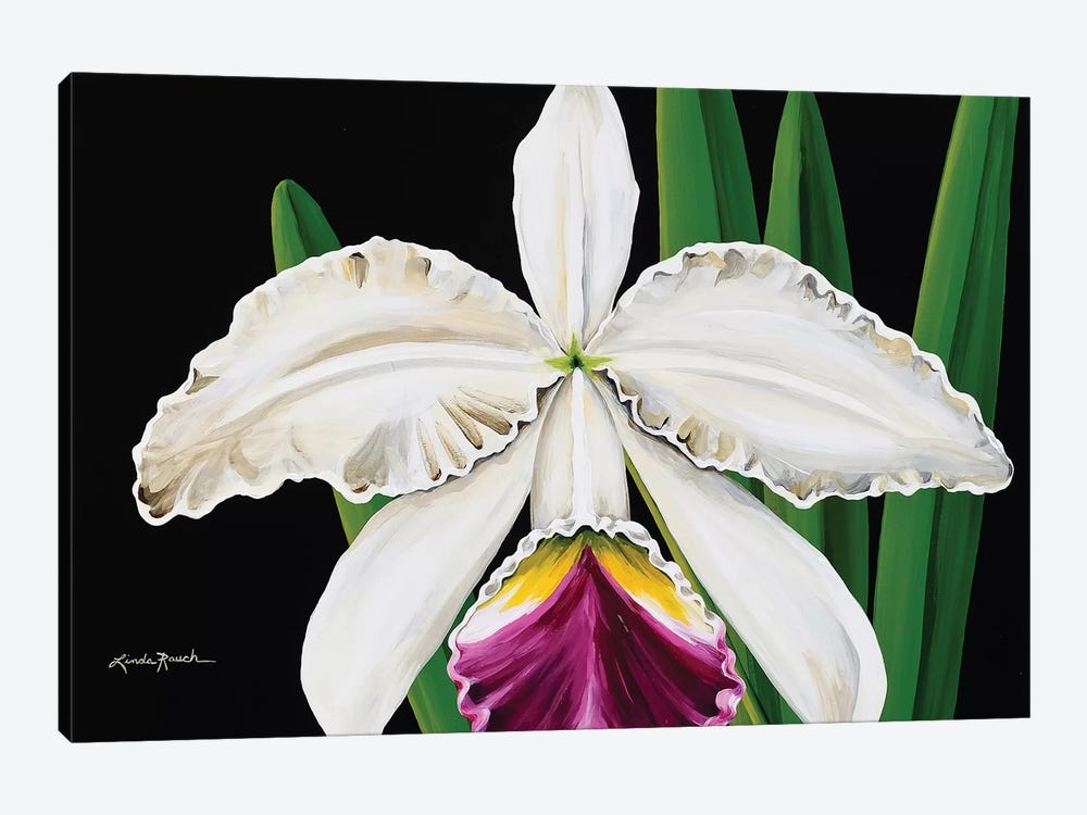 White Orchid by Linda Rauch 1-piece Canvas Artwork
