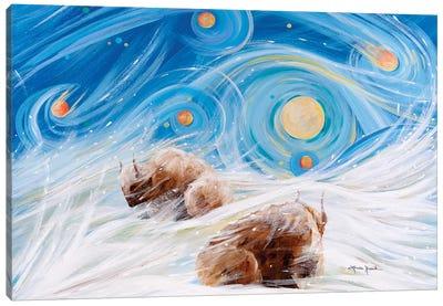 Winter Night Canvas Art Print