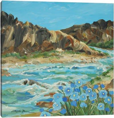 Taos Box Canyon Canvas Art Print