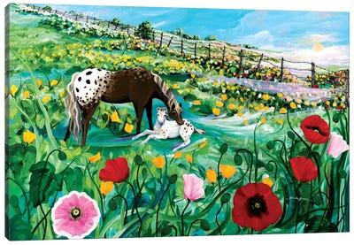 Buttercup Baby Canvas Art Print