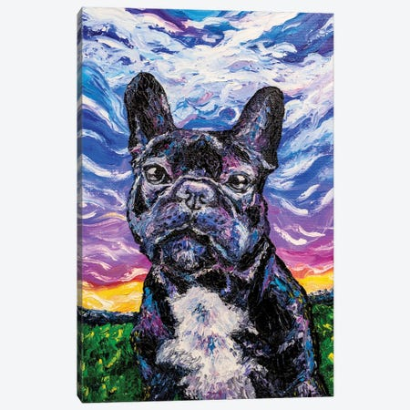 French Bulldog Canvas Print #LRC13} by Larisa Chigirina Canvas Wall Art