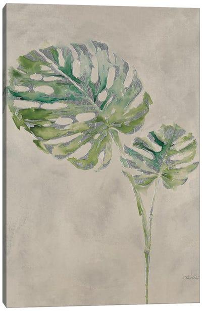 Fresh Unfolds III Canvas Art Print