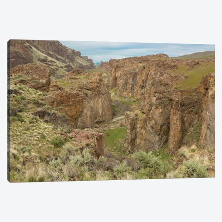 Succor Creek Canyon Canvas Print #LRH101} by Louis Ruth Canvas Art