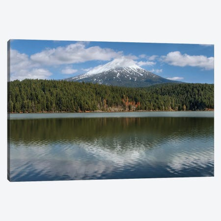 Willow Lake Canvas Print #LRH119} by Louis Ruth Canvas Print