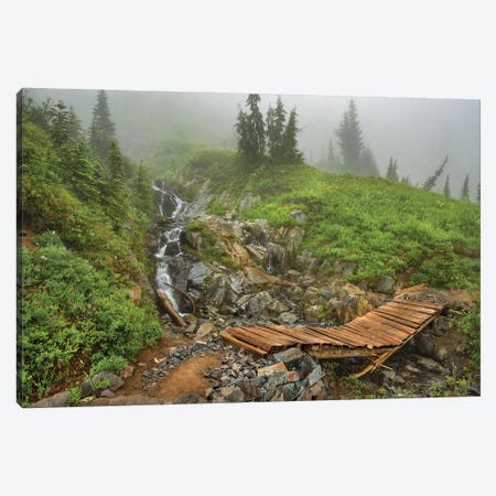 Broken Bridge Into A Misty World Canvas Print #LRH129} by Louis Ruth Canvas Artwork