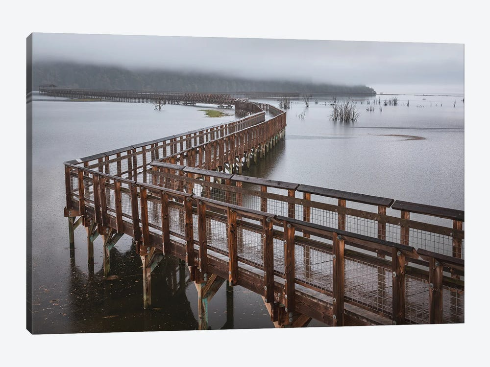 Nisqually Estuary Boardwalk Trail by Louis Ruth 1-piece Canvas Artwork