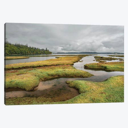 Nisqually National Wildlife Low Tide Canvas Print #LRH149} by Louis Ruth Canvas Artwork