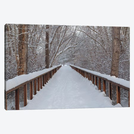 Bridge The Gap, We Are All Equal Canvas Print #LRH14} by Louis Ruth Canvas Wall Art