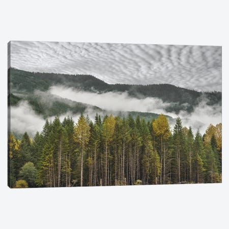 Overcast Foggy Fall Morning Canvas Print #LRH152} by Louis Ruth Canvas Print