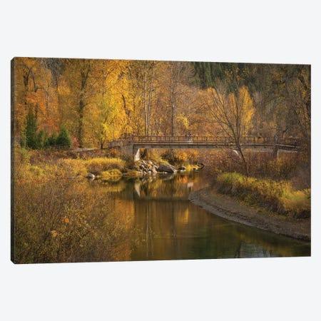 Autumn Gold Canvas Print #LRH243} by Louis Ruth Canvas Art Print