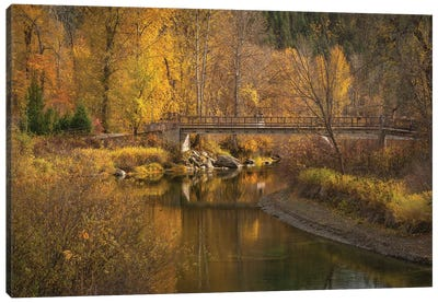Autumn Gold Canvas Art Print