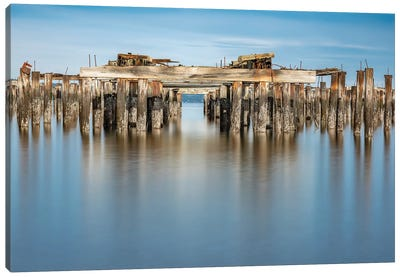 Smooth Pilings Canvas Art Print
