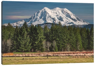 Mt Rainier Winter Of 2020 Canvas Art Print