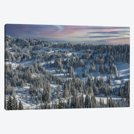 Winter In Paradise Valley Mt Rainier Canvas Print #LRH287} by Louis Ruth Canvas Artwork