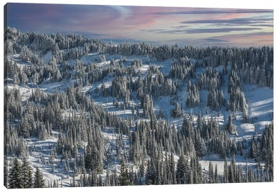 Winter In Paradise Valley Mt Rainier Canvas Art Print