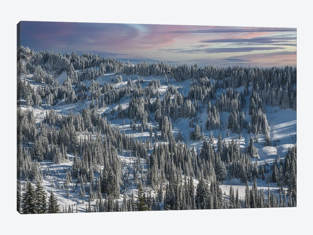 Winter In Paradise Valley Mt Rainier by Louis Ruth 1-piece Canvas Art