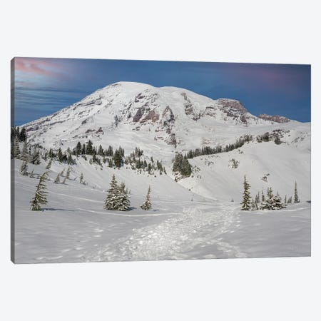 On The Trails At Mt Rainier Canvas Print #LRH288} by Louis Ruth Canvas Print