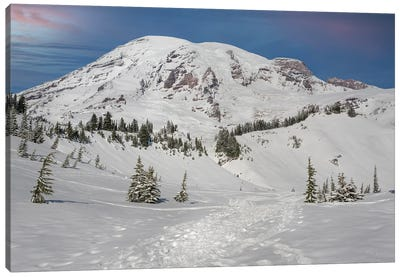 On The Trails At Mt Rainier Canvas Art Print