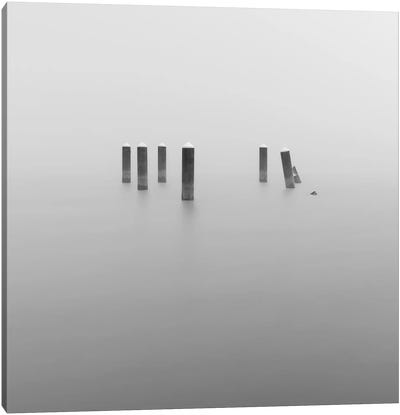 In The Fog Canvas Art Print