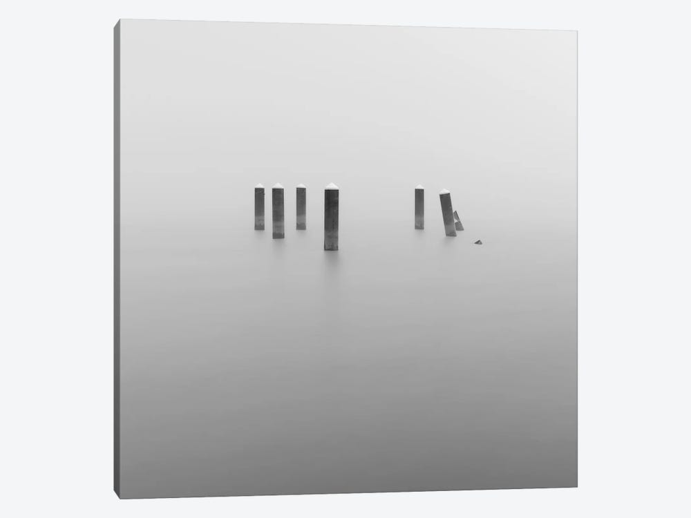 In The Fog by Louis Ruth 1-piece Canvas Wall Art