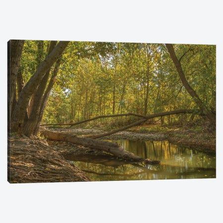 A Peaceful Place Canvas Print #LRH2} by Louis Ruth Canvas Print