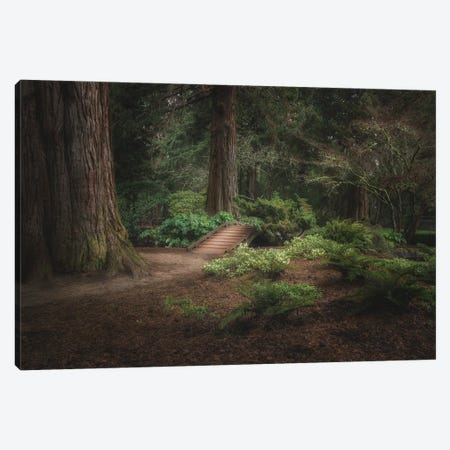 A Little Peace And Quiet 2021 Canvas Print #LRH306} by Louis Ruth Canvas Print