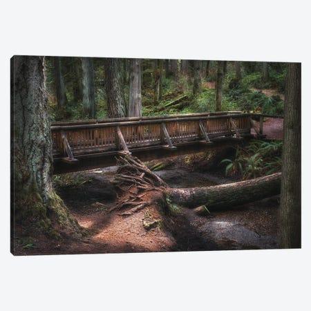 A Walk In Through Nature Canvas Print #LRH323} by Louis Ruth Canvas Art