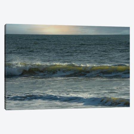 Luminous Waves Canvas Print #LRH384} by Louis Ruth Canvas Art Print
