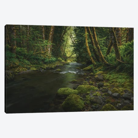 Enchanting Olympic Woodlands Canvas Print #LRH396} by Louis Ruth Canvas Art