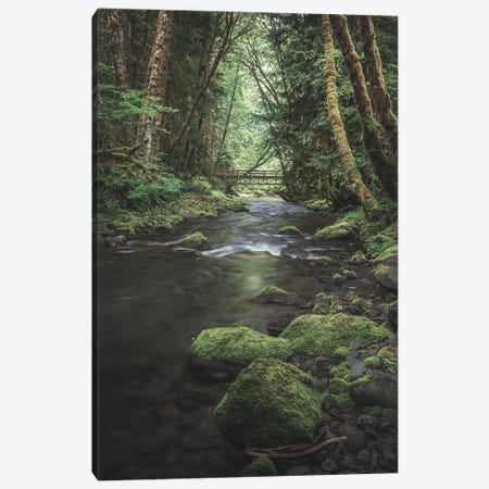Enchanting Olympic Woodlands Version II Canvas Print #LRH397} by Louis Ruth Canvas Artwork