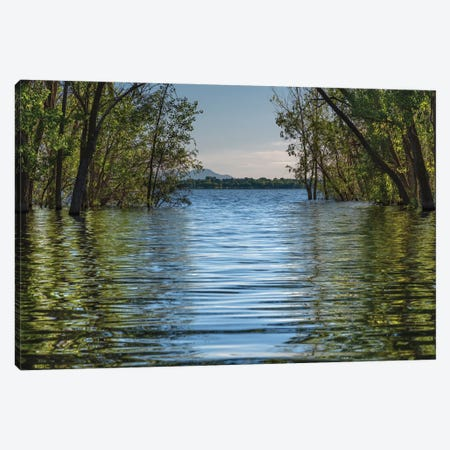 A Spring Morning At Lake Lowell Canvas Print #LRH3} by Louis Ruth Art Print