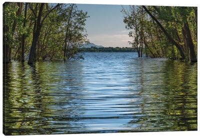 A Spring Morning At Lake Lowell Canvas Art Print