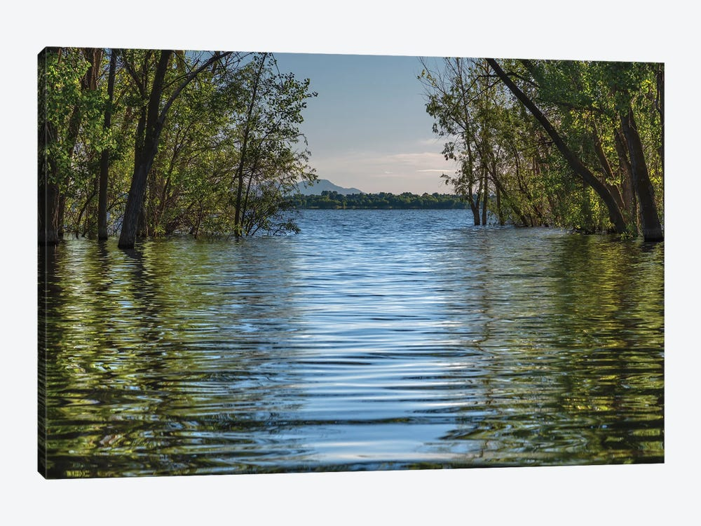 A Spring Morning At Lake Lowell by Louis Ruth 1-piece Canvas Print