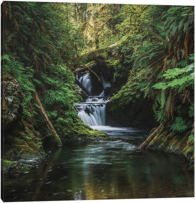 The Grace In A Waterfalls Canvas Art Print