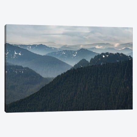 Vista View Canvas Print #LRH426} by Louis Ruth Canvas Wall Art
