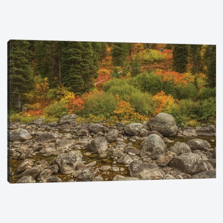The Hills Are Flowing With Color Canvas Print #LRH45} by Louis Ruth Canvas Print