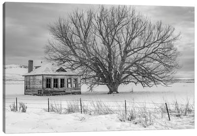 Abandon Black And White Canvas Art Print