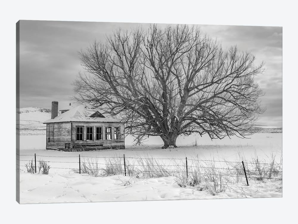 Abandon Black And White by Louis Ruth 1-piece Art Print